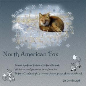 day-5-north-america-fox