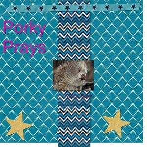 porky-pine600-2