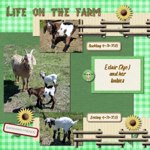 eclair-life-on-the-farm_600