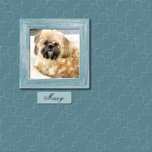 missy-paperframe