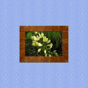 image-after-wood-frame-added