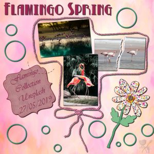 flamingospring-600