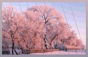 cold-day-jan-2019-slats-resentation