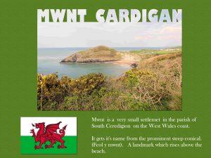 mwnt-cardigan-word-edge