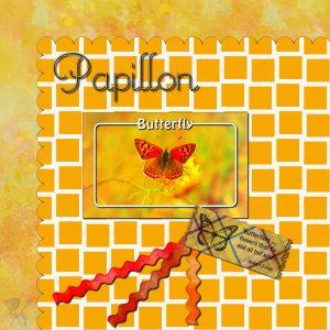 papillon-600-2