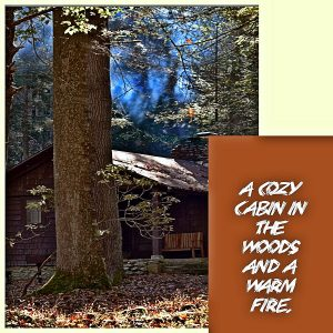 a-cozy-cabin600x600