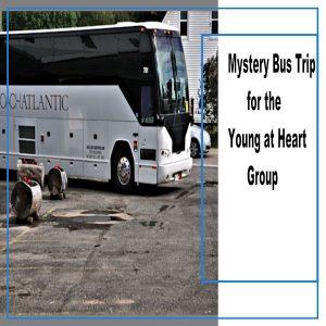 hb-mysterybustrip-002