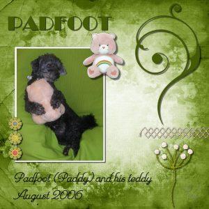 padfoot-600