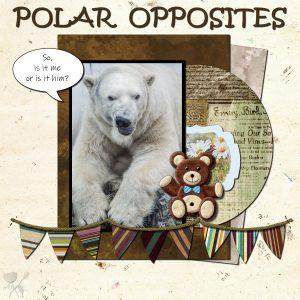 polar-opposites-600