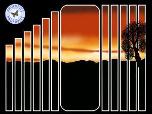 sunset-slats-1