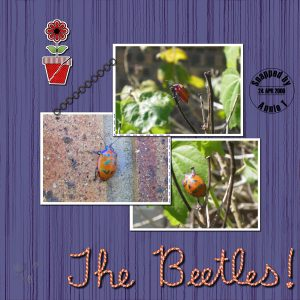 the-beetles-600