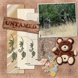 untamed-600