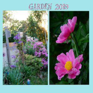 my-garden-2019-final-pg-8-600