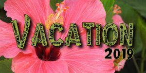 vacation-word-art-green-reduced-2