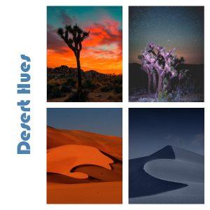 desert-hues-600