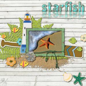 starfish-600