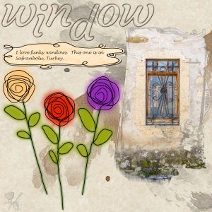window-600