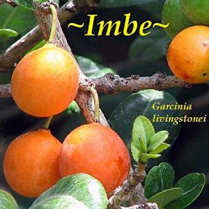 imbe-fruit