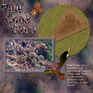 pine-cone-glory-600