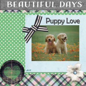 puppy-600x600