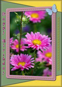 spring-frame-geometric-effects-2