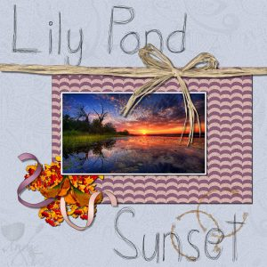 lily-pond-sunset-600