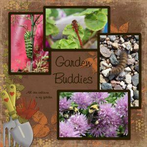 day-6-garden-buddies-600