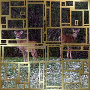 deer-600x600