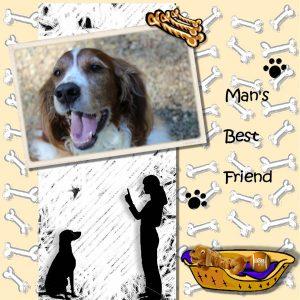 mans-best-friend