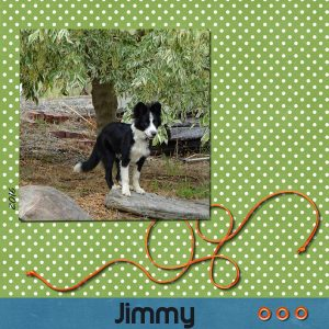 project-1-jimmy-600