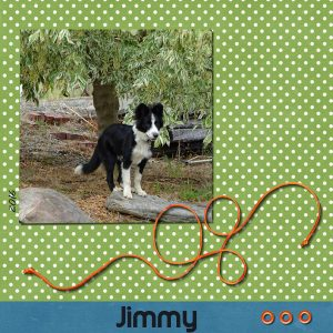 project-1-jimmy-v2-600