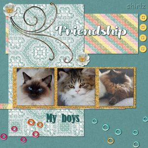 friends-jpg-600-2