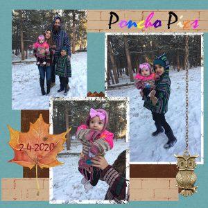 poncho-pics-2-4-2020-final-jpg-600
