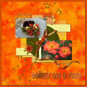 color-me-a-rose
