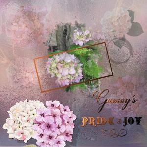 granny-pride-joy-3