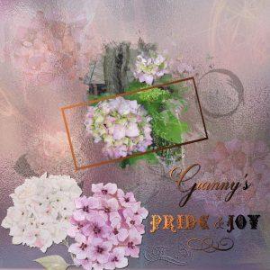 granny-pride-joy