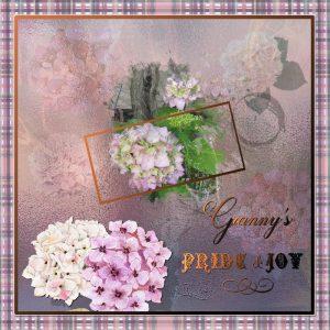 granny-pride-joy-framed-reducedjpg