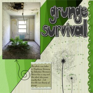 grunge-survival-resized