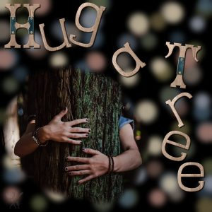 hug-a-tree-resized
