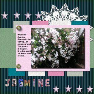 jasminebloojm600j