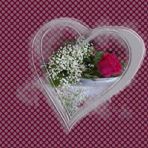 lovestorythanks600