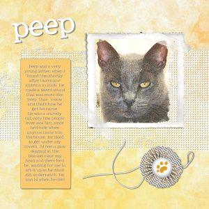 peep-600x600-3