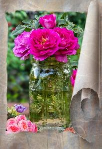 roses-in-a-fruit-jar