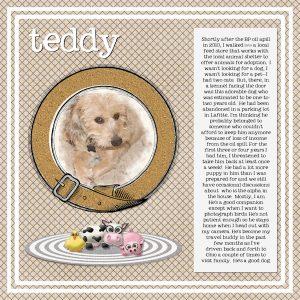 teddy-600x600-2