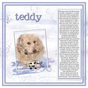 teddy-jpg2-600x600