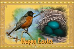easter-2020-robin-with-nest