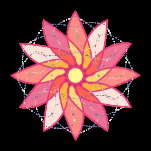 flower-02-03-cluster