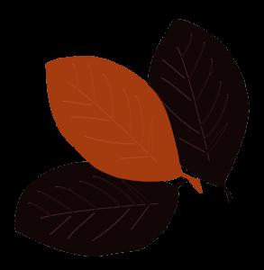 leaves-600x600