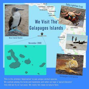 destination-galapagos-islands