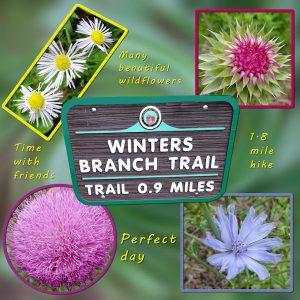 2020-6-20-winters-branch-trail-600